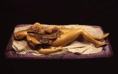 Sublimi anatomie. L'arte del corpo umano